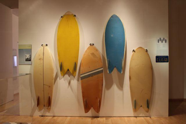 Surf Craft_fish